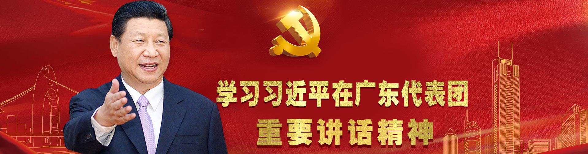 习近平在广东代表团重要讲话
